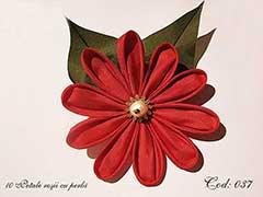 10 Petale rosii cu perla